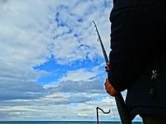 釣られる!